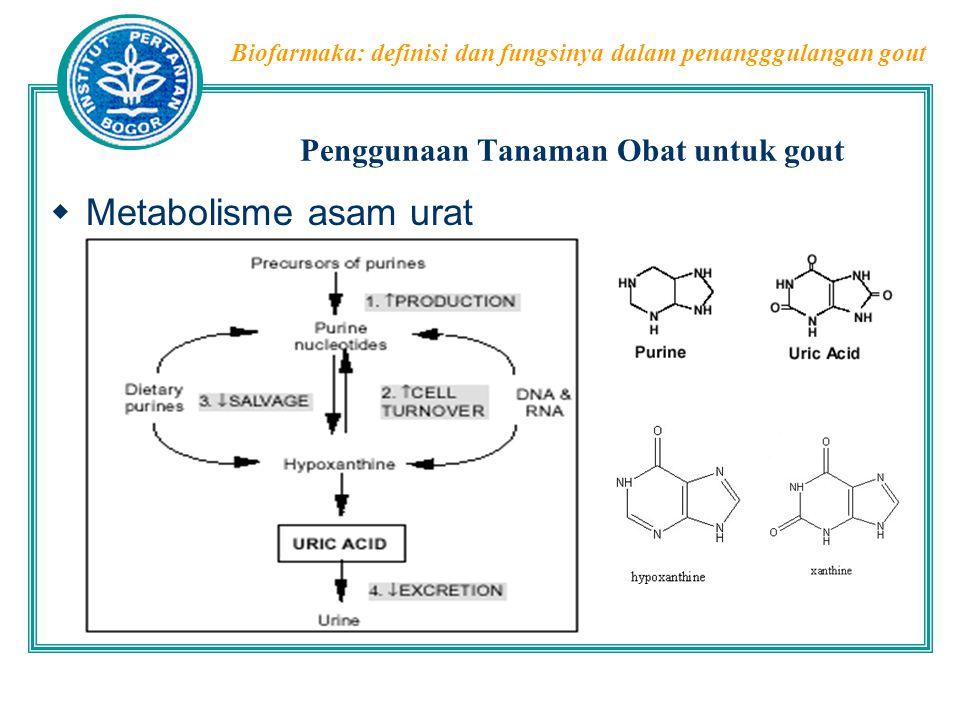 Biofarmaka: definisi dan fungsinya dalam penangggulangan gout Penggunaan Tanaman Obat untuk gout  Apa yang menyebabkan gout.