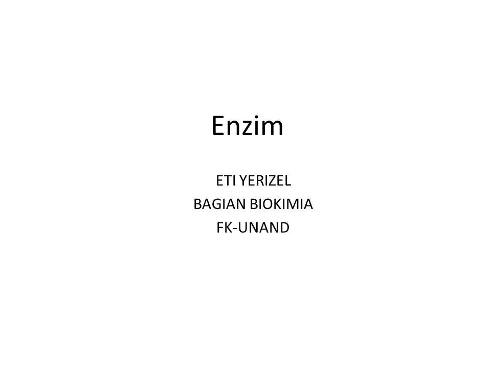 Enzim ETI YERIZEL BAGIAN BIOKIMIA FK-UNAND