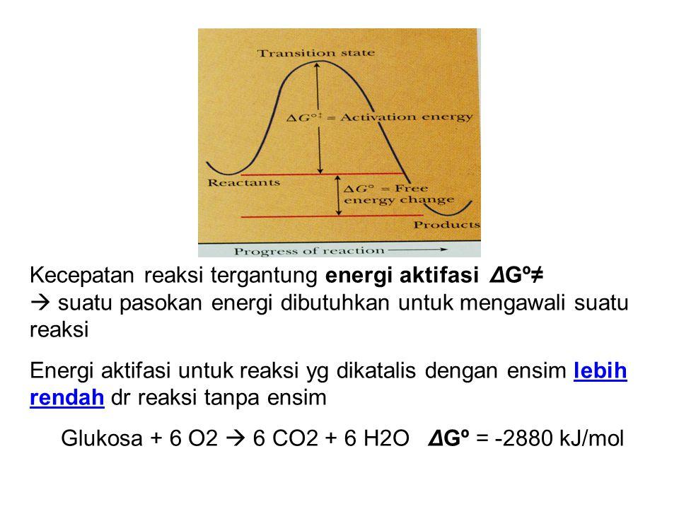 Kecepatan reaksi tergantung energi aktifasi ΔGº≠  suatu pasokan energi dibutuhkan untuk mengawali suatu reaksi Energi aktifasi untuk reaksi yg dikata