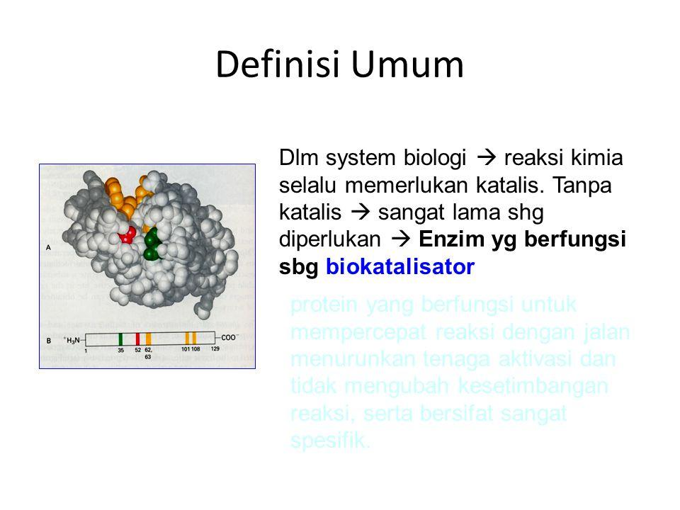 Bagaimana enzim bekerja Reaksi tanpa enzim: – Lambat – Membutuhkan suhu yang tinggi – Tekanan yang tinggi Reaksi enzimatis – Enzim memberikan suatu lingkungan yg spesifik di dalam sisi aktifnya, sehingga reaksi secara energetik dapat lebih mudah terjadi
