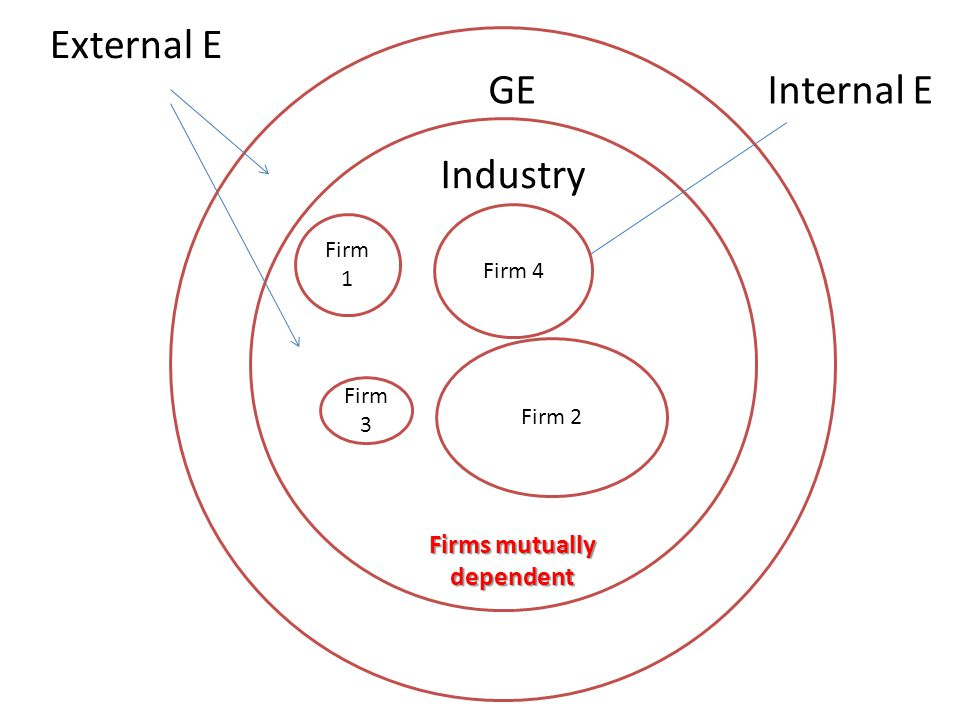Firm 1 Industry GE External E Internal E Firms mutually dependent Firm 2 Firm 3 Firm 4