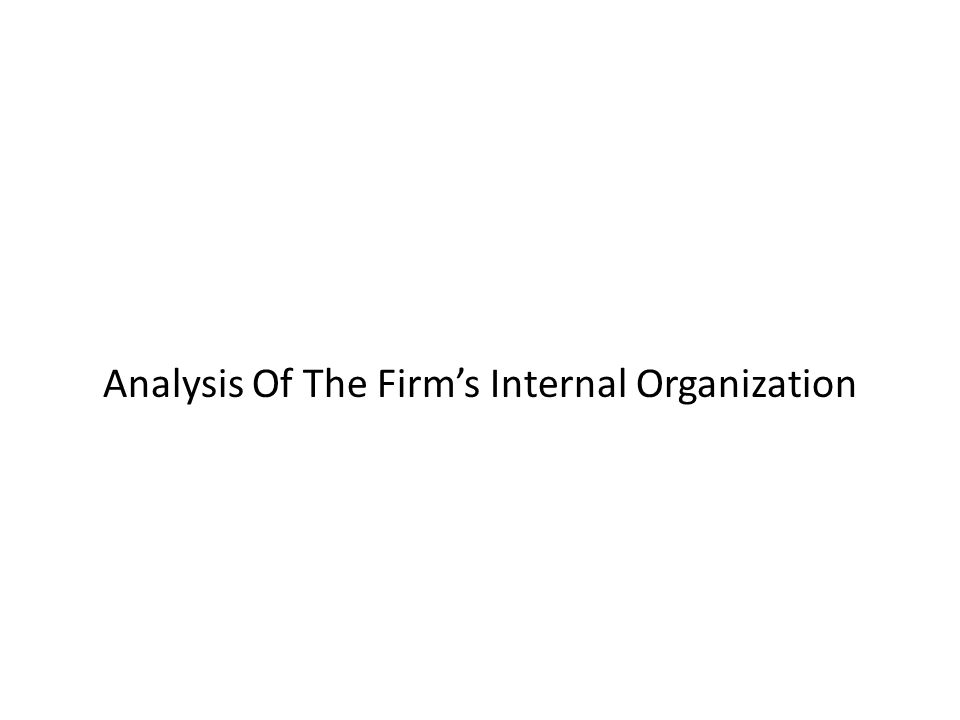 Analysis Of The Firm's Internal Organization