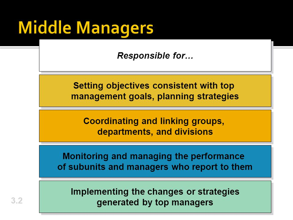 3.2 Responsible for… Setting objectives consistent with top management goals, planning strategies Coordinating and linking groups, departments, and di