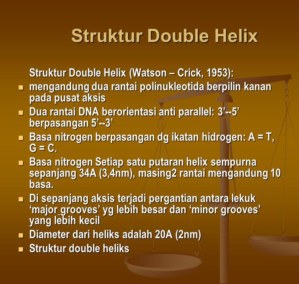 Struktur Double Helix Struktur Double Helix (Watson – Crick, 1953): mengandung dua rantai polinukleotida berpilin kanan pada pusat aksis mengandung du