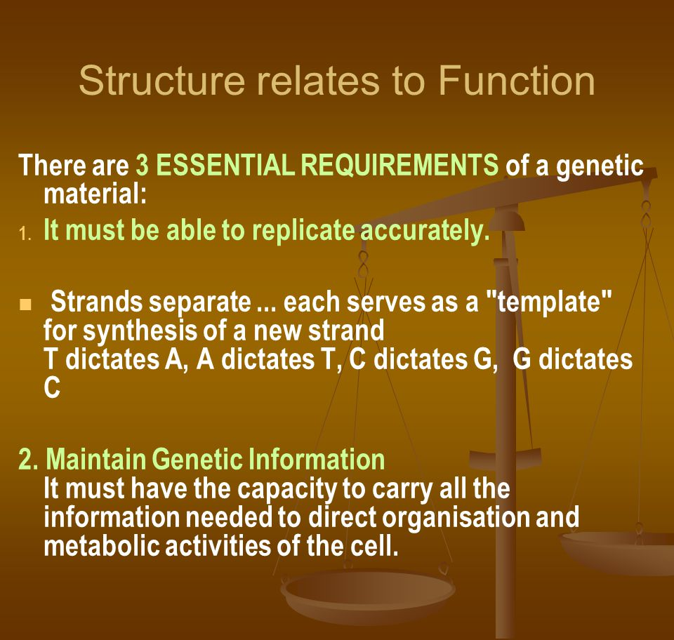 Structure relates to Function There are 3 ESSENTIAL REQUIREMENTS of a genetic material: 1. 1. It must be able to replicate accurately. Strands separat