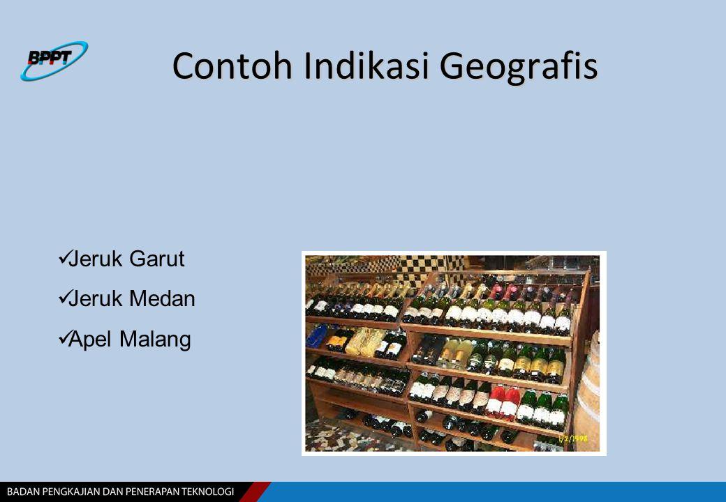 Contoh Indikasi Geografis Jeruk Garut Jeruk Medan Apel Malang