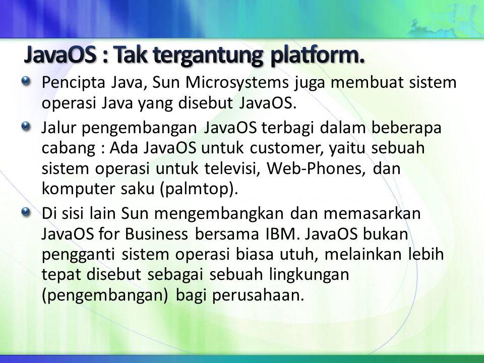 Pencipta Java, Sun Microsystems juga membuat sistem operasi Java yang disebut JavaOS. Jalur pengembangan JavaOS terbagi dalam beberapa cabang : Ada Ja