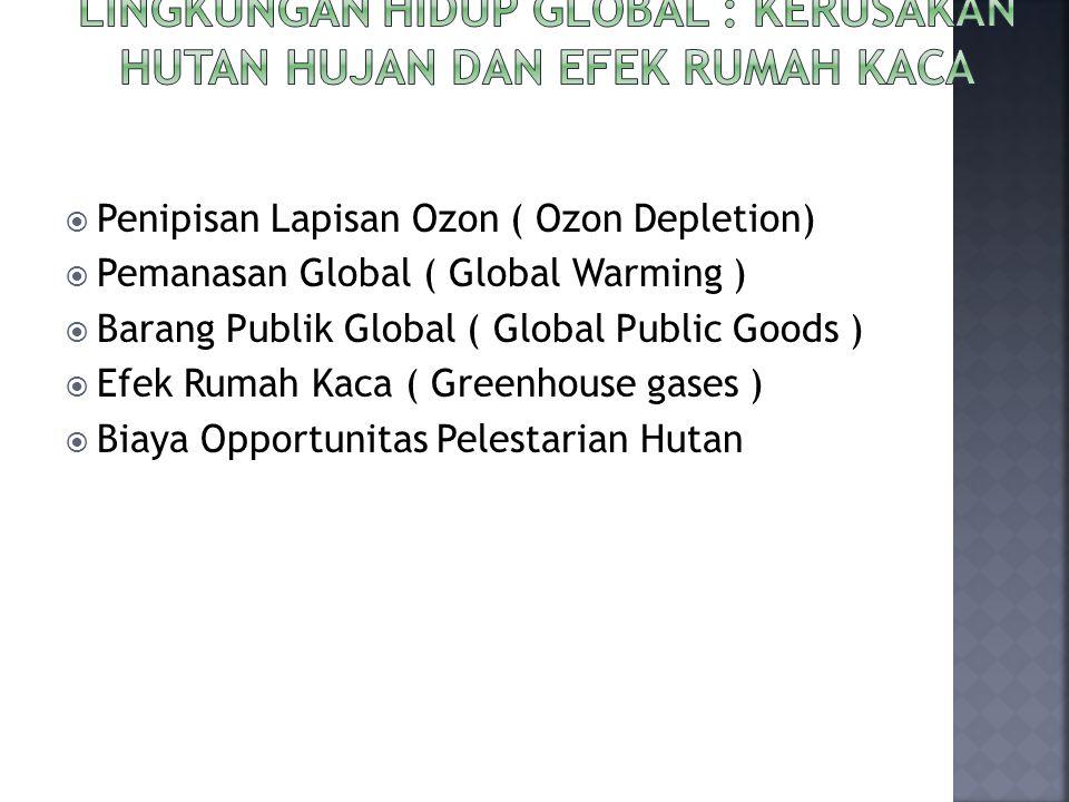  Penipisan Lapisan Ozon ( Ozon Depletion)  Pemanasan Global ( Global Warming )  Barang Publik Global ( Global Public Goods )  Efek Rumah Kaca ( Gr