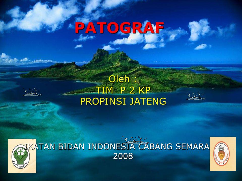 1 PATOGRAF Oleh : TIM P 2 KP PROPINSI JATENG IKATAN BIDAN INDONESIA CABANG SEMARANG 2008