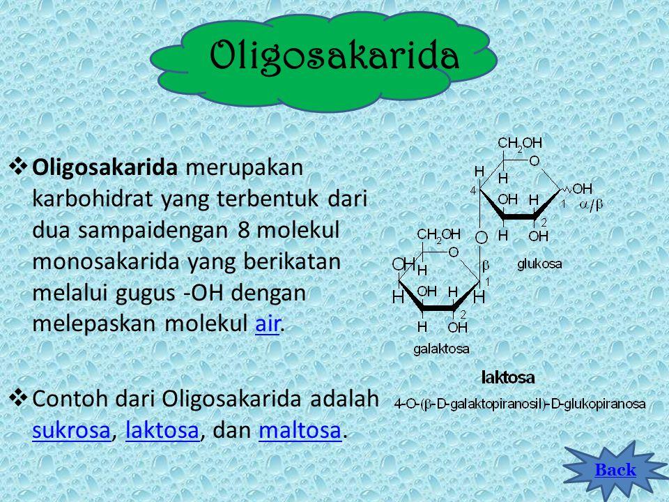Monosakarida  Monosakarida merupakan karbohidrat paling sederhana dan tidak dapat diuraikan dengan cara hidrolisis menjadi karbohidrat lain. Monosaka