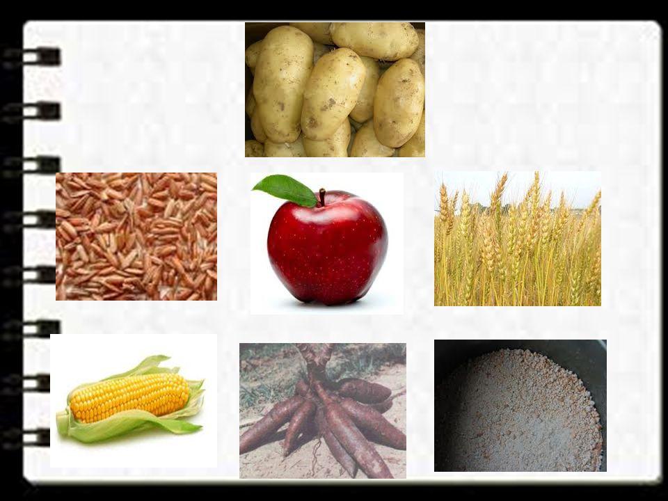 Apa saja contoh makanan yang mengandung Karbohidrat ??? Beras merah Kentang Ubi jalar Apel Sagu Gandum Singkong Jagung, dll.