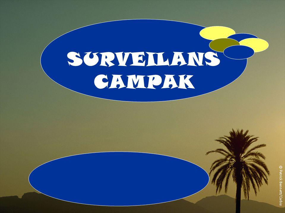 A 1 SURVEILANS CAMPAK