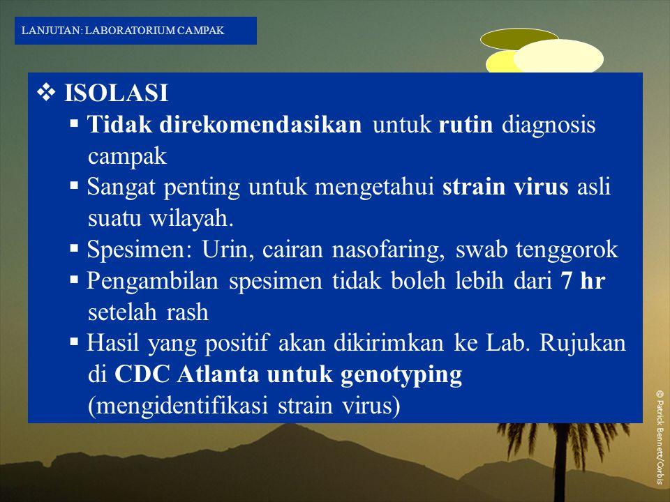  ISOLASI  Tidak direkomendasikan untuk rutin diagnosis campak  Sangat penting untuk mengetahui strain virus asli suatu wilayah.  Spesimen: Urin, c