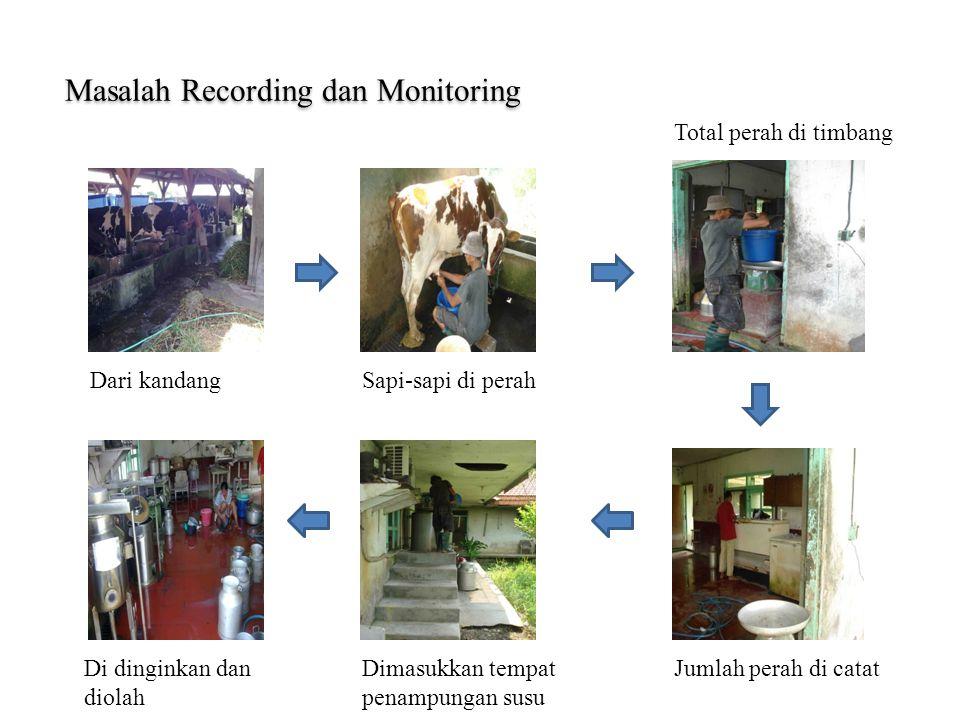 Masalah Recording dan Monitoring Dari kandangSapi-sapi di perah Total perah di timbang Jumlah perah di catatDimasukkan tempat penampungan susu Di ding