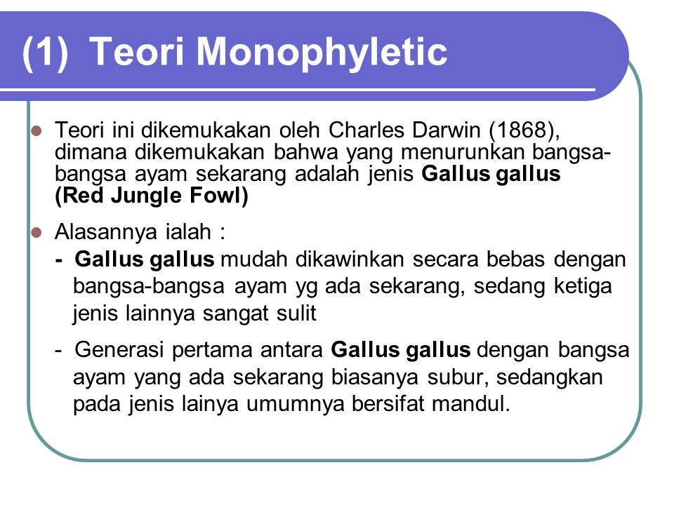 (1)Teori Monophyletic Teori ini dikemukakan oleh Charles Darwin (1868), dimana dikemukakan bahwa yang menurunkan bangsa- bangsa ayam sekarang adalah j