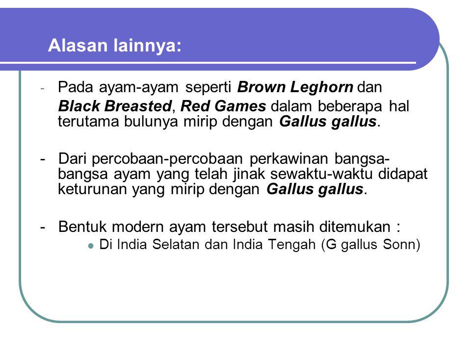 - Pada ayam-ayam seperti Brown Leghorn dan Black Breasted, Red Games dalam beberapa hal terutama bulunya mirip dengan Gallus gallus. - Dari percobaan-