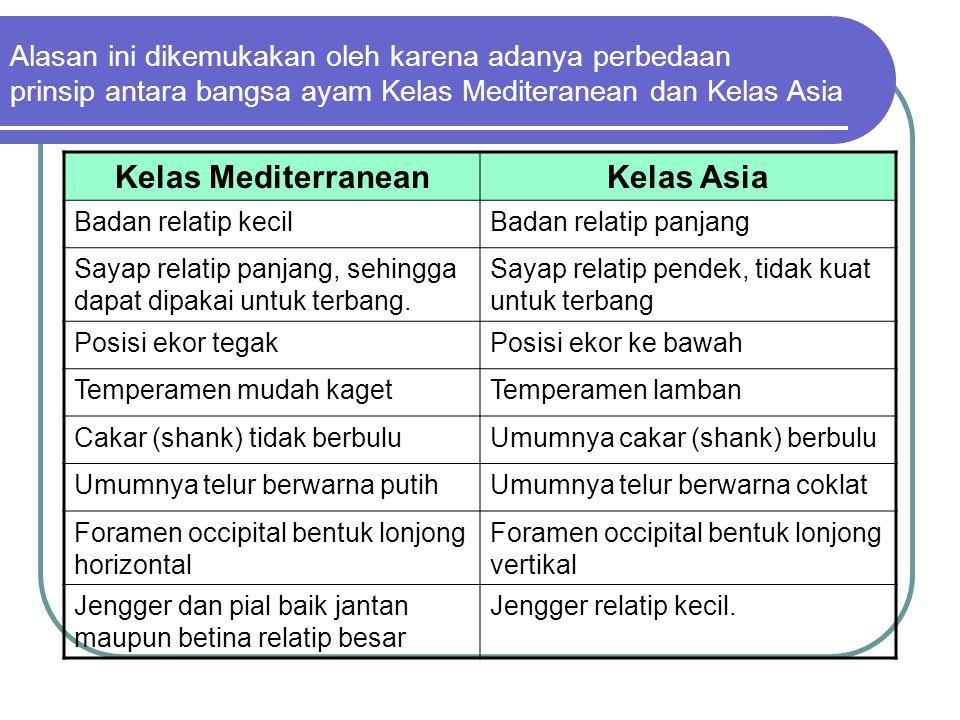 Alasan ini dikemukakan oleh karena adanya perbedaan prinsip antara bangsa ayam Kelas Mediteranean dan Kelas Asia Kelas MediterraneanKelas Asia Badan r