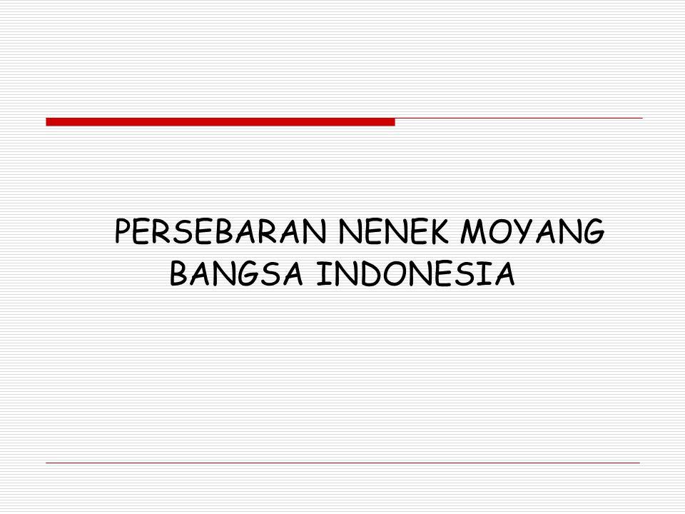 PRESENTASI SEJARAH PERSEBARAN NENEK MOYANG BANGSA INDONESIA