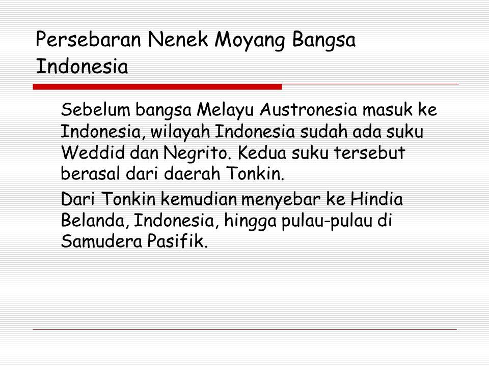 Persebaran Nenek Moyang Bangsa Indonesia Sebelum bangsa Melayu Austronesia masuk ke Indonesia, wilayah Indonesia sudah ada suku Weddid dan Negrito.