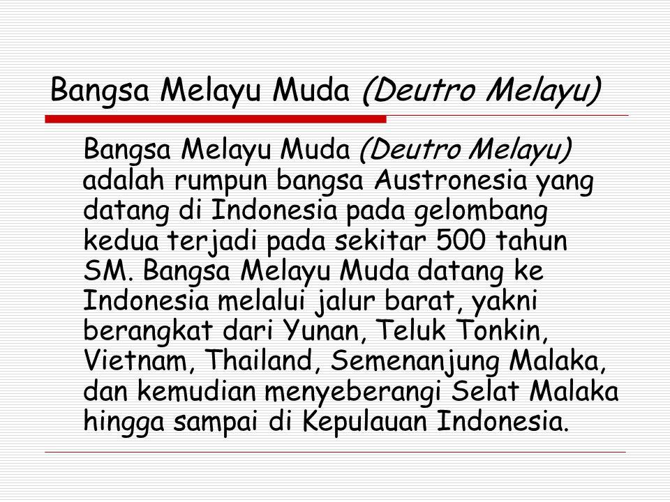 Bangsa Melayu Muda (Deutro Melayu) Bangsa Melayu Muda (Deutro Melayu) adalah rumpun bangsa Austronesia yang datang di Indonesia pada gelombang kedua terjadi pada sekitar 500 tahun SM.