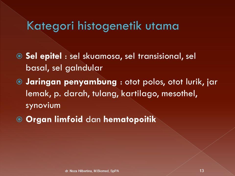  Sel epitel : sel skuamosa, sel transisional, sel basal, sel galndular  Jaringan penyambung : otot polos, otot lurik, jar lemak, p. darah, tulang, k