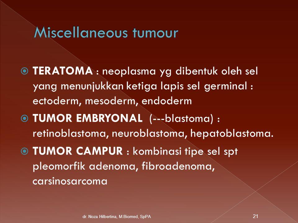  TERATOMA : neoplasma yg dibentuk oleh sel yang menunjukkan ketiga lapis sel germinal : ectoderm, mesoderm, endoderm  TUMOR EMBRYONAL (---blastoma)