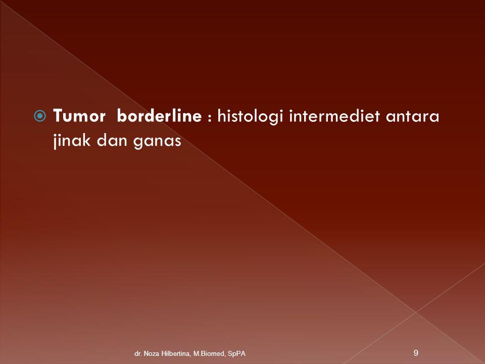  Tumor borderline : histologi intermediet antara jinak dan ganas dr. Noza Hilbertina, M.Biomed, SpPA 9