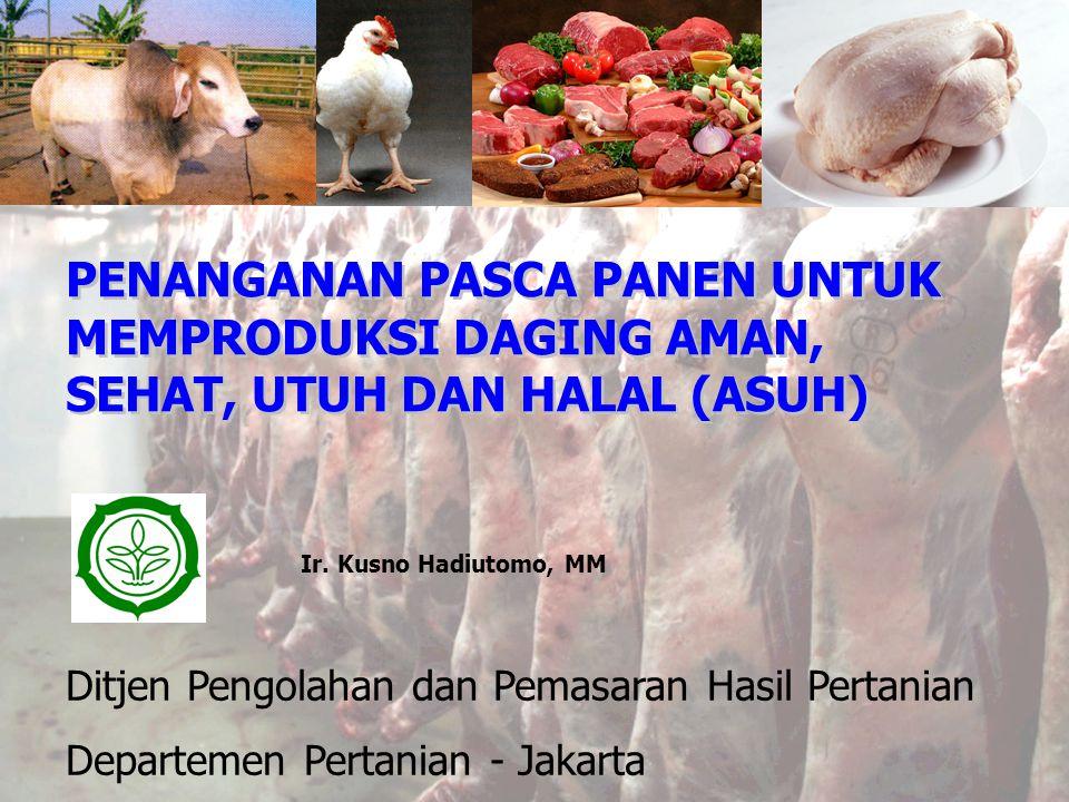 PENANGANAN PASCA PANEN UNTUK MEMPRODUKSI DAGING AMAN, SEHAT, UTUH DAN HALAL (ASUH) Ditjen Pengolahan dan Pemasaran Hasil Pertanian Departemen Pertanian - Jakarta Ir.