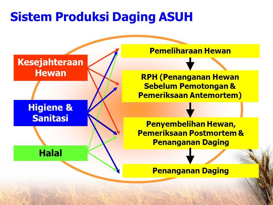 Higiene & Sanitasi Halal Kesejahteraan Hewan Pemeliharaan Hewan RPH (Penanganan Hewan Sebelum Pemotongan & Pemeriksaan Antemortem) Penyembelihan Hewan, Pemeriksaan Postmortem & Penanganan Daging Penanganan Daging Sistem Produksi Daging ASUH