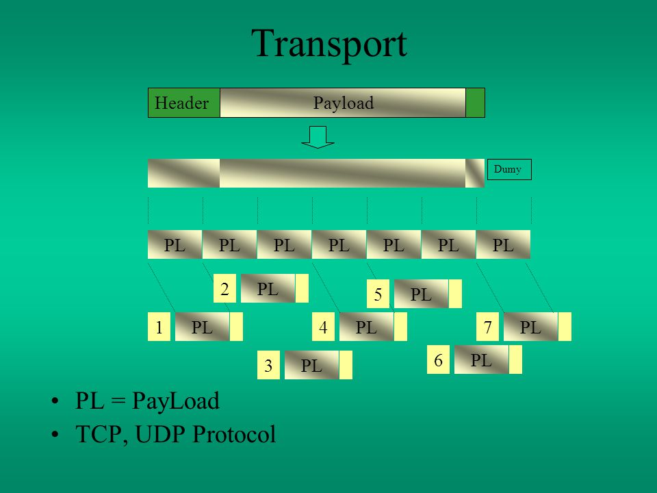 Transport PL = PayLoad TCP, UDP Protocol PayloadHeader PL Dumy PL4 1 7 2 3 5 6