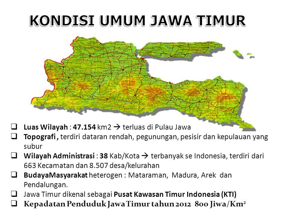  Luas Wilayah : 47.154 km2  terluas di Pulau Jawa  Topografi, terdiri dataran rendah, pegunungan, pesisir dan kepulauan yang subur  Wilayah Admini