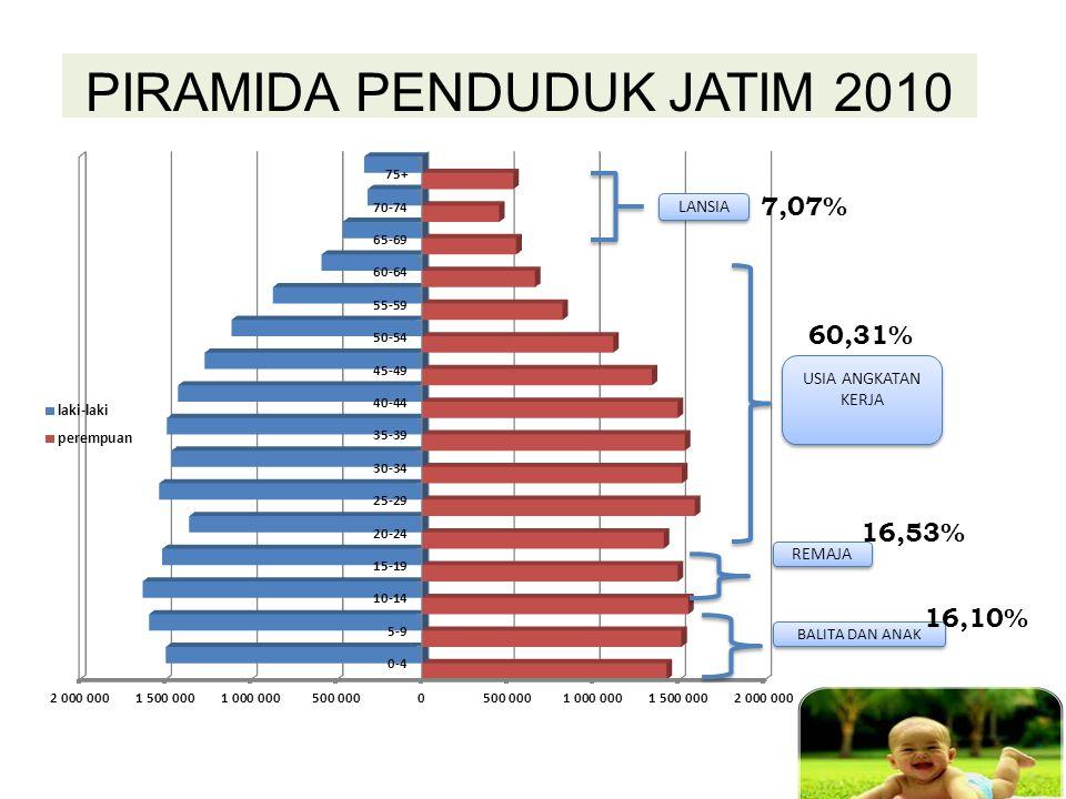 IPM dapat menggambarkan hasil pelaksanaan pembangunan manusia menurut tiga komponen indikator kemampuan manusia yang sangat mendasar yaitu derajat kesehatan, kualitas pendidikan serta daya beli masyarakat (akses thd sumber daya ekonomi) 6 IPM Jatim masih dalam urutan ke 17 nasional