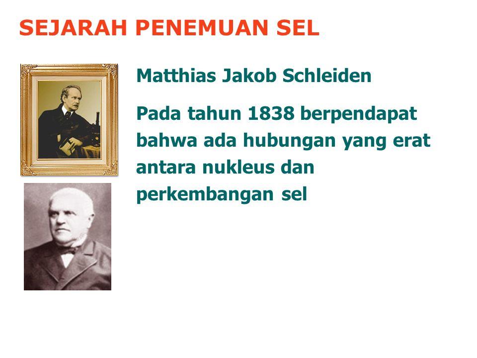 SEJARAH PENEMUAN SEL Matthias Jakob Schleiden Pada tahun 1838 berpendapat bahwa ada hubungan yang erat antara nukleus dan perkembangan sel