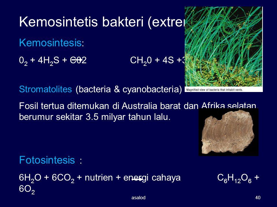 Kemosintetis bakteri (extremophiles) Kemosintesis : 0 2 + 4H 2 S + C02 CH 2 0 + 4S +3H 2 0 Stromatolites (bacteria & cyanobacteria) Fosil tertua ditem