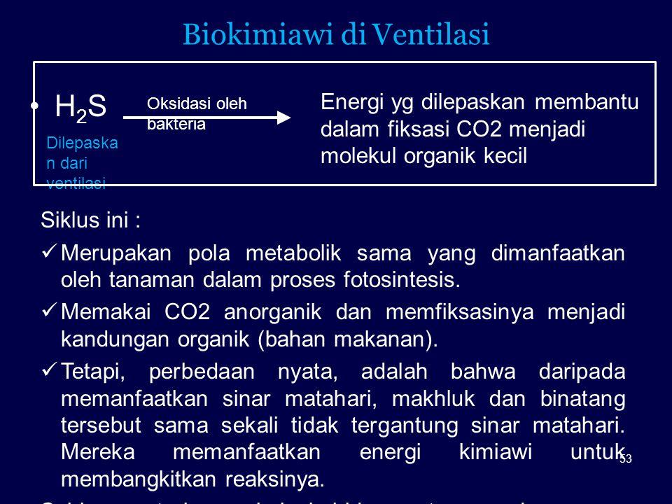 Biokimiawi di Ventilasi H 2 S Oksidasi oleh bakteria Energi yg dilepaskan membantu dalam fiksasi CO2 menjadi molekul organik kecil Siklus ini : Merupa