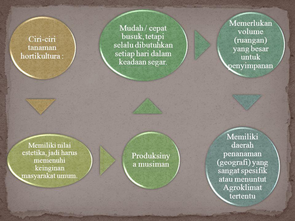 Hortikultura berasal dari kata Hortos : yang berarti Kebun dan Colere : yang berarti mengusahakan (budidaya).