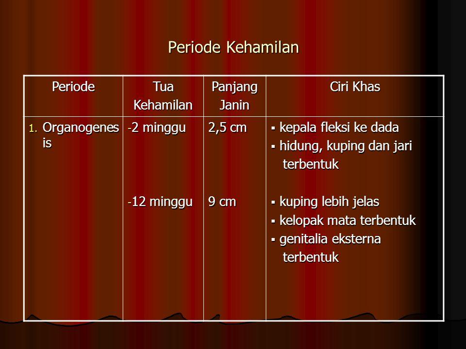 Periode Kehamilan PeriodeTuaKehamilanPanjangJanin Ciri Khas 1.