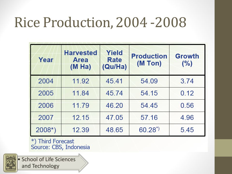 Rice Production, 2004 -2008