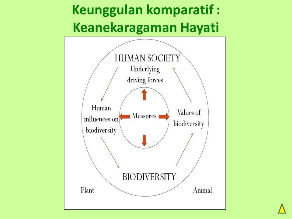 Keunggulan komparatif : Keanekaragaman Hayati