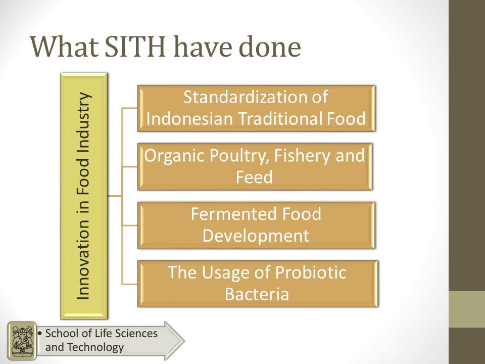 What SITH have done Innovation in Food Industry Standardization of Indonesian Traditional Food Organic Poultry, Fishery and Feed Fermented Food Development The Usage of Probiotic Bacteria