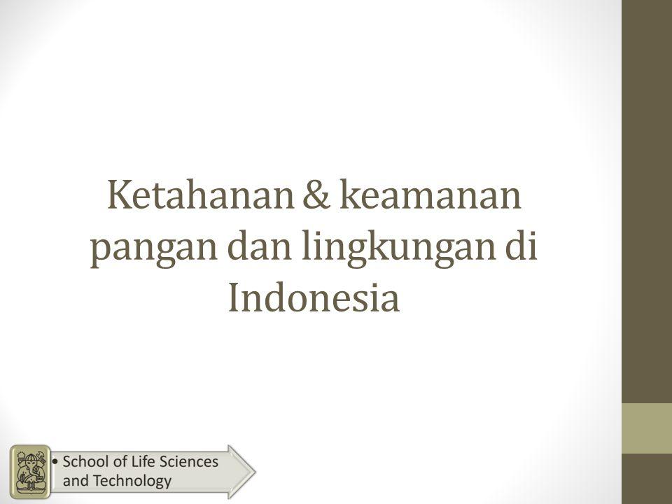 Ketahanan & keamanan pangan dan lingkungan di Indonesia