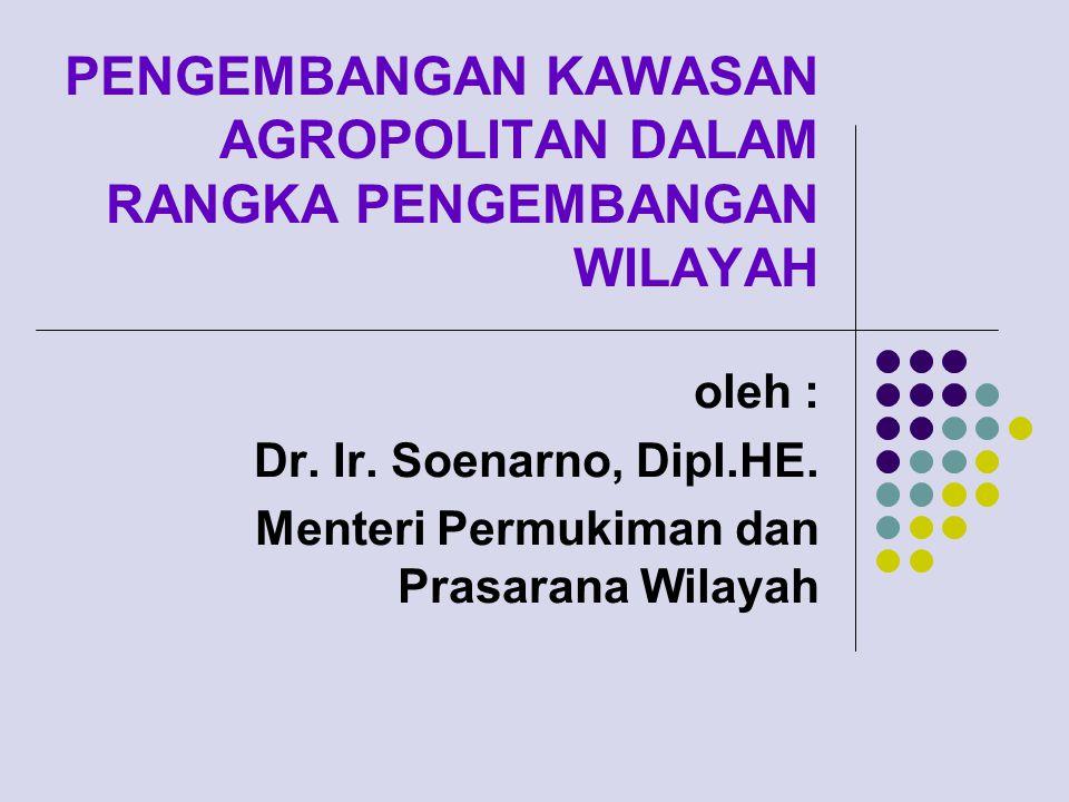 PENGEMBANGAN KAWASAN AGROPOLITAN DALAM RANGKA PENGEMBANGAN WILAYAH oleh : Dr.
