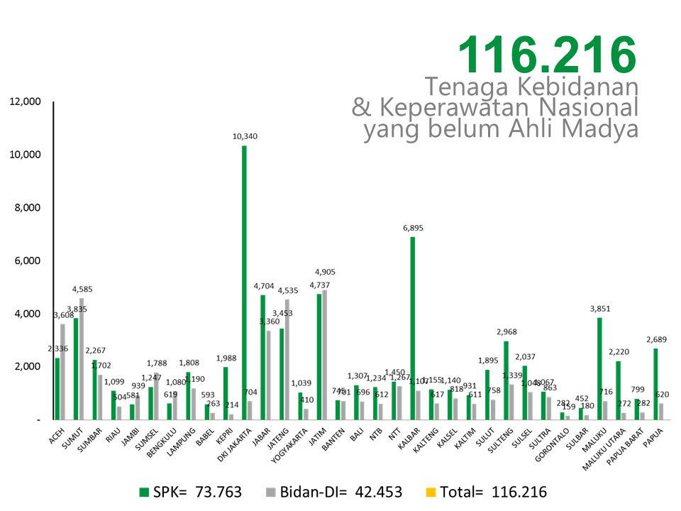 Tenaga Kebidanan & Keperawatan Nasional yang belum Ahli Madya 116.216