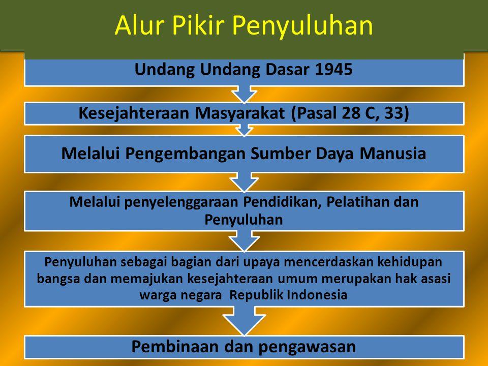 Alur Pikir Penyuluhan Pembinaan dan pengawasan Penyuluhan sebagai bagian dari upaya mencerdaskan kehidupan bangsa dan memajukan kesejahteraan umum merupakan hak asasi warga negara Republik Indonesia Melalui penyelenggaraan Pendidikan, Pelatihan dan Penyuluhan Melalui Pengembangan Sumber Daya Manusia Kesejahteraan Masyarakat (Pasal 28 C, 33) Undang Undang Dasar 1945 Alur Pikir Penyuluhan