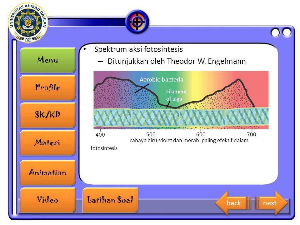 Menu Profile SK/KD Materi Animation Video Latihan Soal Latihan Soal Spektrum aksi fotosintesis – Ditunjukkan oleh Theodor W. Engelmann 400 500600700 A