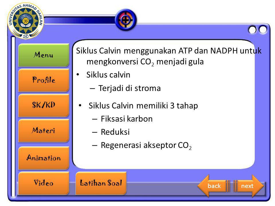 Menu Profile SK/KD Materi Animation Video Latihan Soal Latihan Soal Siklus Calvin menggunakan ATP dan NADPH untuk mengkonversi CO 2 menjadi gula Siklu