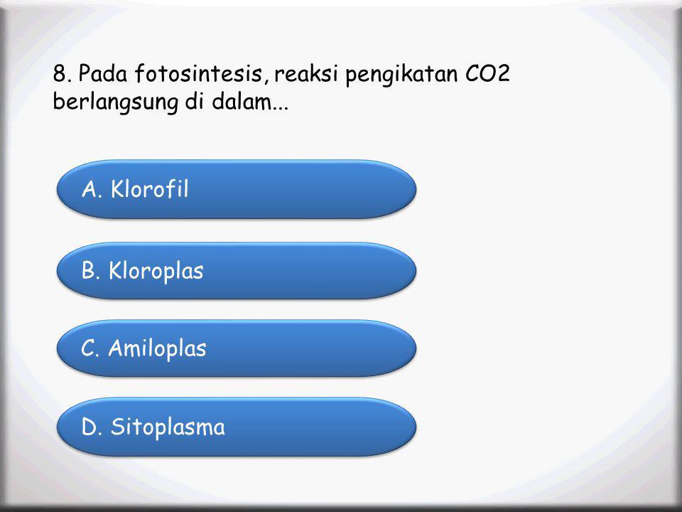 Menu Profile SK/KD Materi Animation Video Latihan Soal Latihan Soal 8. Pada fotosintesis, reaksi pengikatan CO2 berlangsung di dalam... A. Klorofil A.