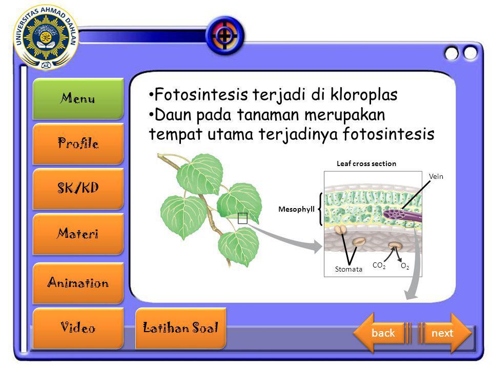 Menu Profile SK/KD Materi Animation Video Latihan Soal Latihan Soal Fotosintesis terjadi di kloroplas Daun pada tanaman merupakan tempat utama terjadi