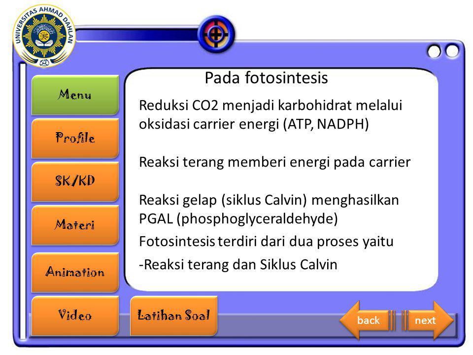 Menu Profile SK/KD Materi Animation Video Latihan Soal Latihan Soal Pada fotosintesis Reduksi CO2 menjadi karbohidrat melalui oksidasi carrier energi