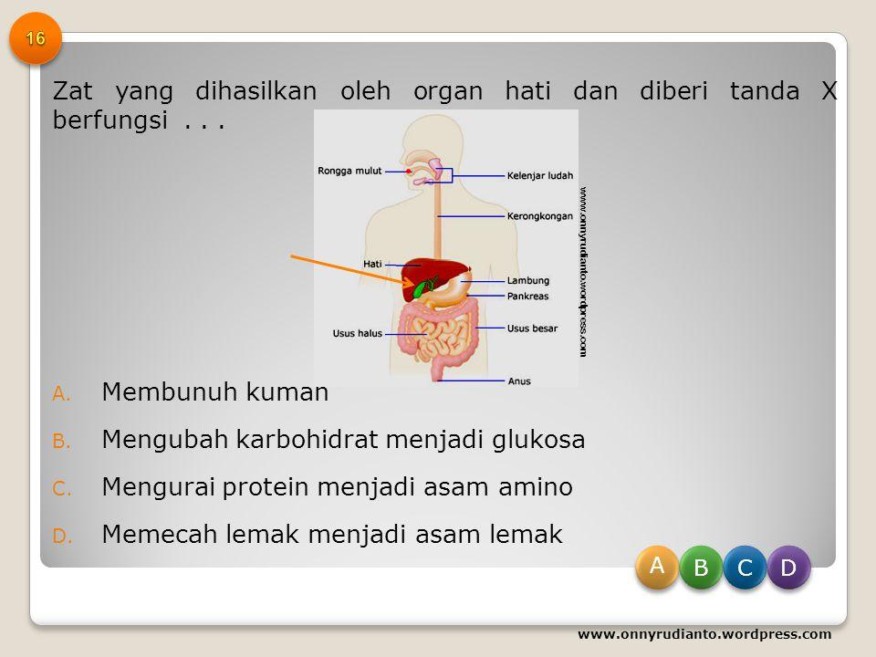 Perhatikan gambar jaringan kulit berikut! Proses yang terjadi pada bagian yang bernomor 1 dan 2 adalah… A. Pengeyesuaian suhu dan mengikat Oksigen B.